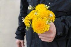 Blumenstrauß des Löwenzahns Stockfoto