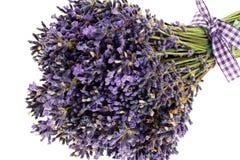 Blumenstrauß des Lavendelblumenschnittes Stockfotografie
