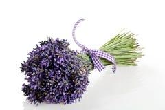 Blumenstrauß des Lavendelblumenschnittes Lizenzfreies Stockbild