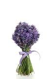 Blumenstrauß des Lavendelblumenschnittes Stockfoto