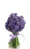 Blumenstrauß des Lavendelblumenschnittes Stockfotos