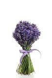 Blumenstrauß des Lavendelblumenschnittes Lizenzfreie Stockfotos