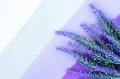 Blumenstrauß des Lavendels legt auf gestreiften weißen grauen violetten Hintergrund Lizenzfreie Stockfotografie