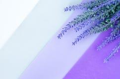 Blumenstrauß des Lavendels legt auf gestreiften weißen grauen violetten Hintergrund Stockbilder