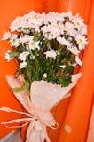 Blumenstrauß des weißen Gänseblümchens blüht auf einem orange Hintergrund Stockfotografie