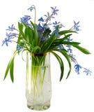 Blumenstrauß in einem Glas lizenzfreie stockfotografie