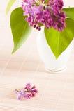 Blumenstrauß einer Flieder Lizenzfreies Stockfoto