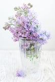 Blumenstrauß einer Flieder Stockfotos