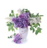 Blumenstrauß einer Flieder Lizenzfreies Stockbild