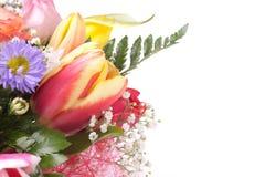 Blumenstrauß, Exemplarplatz, getrennt Stockfotos