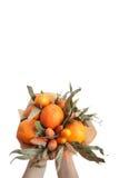 Blumenstrauß färbt Handfrüchte vegatables Hintergrundbank Stockfoto