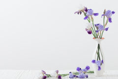 Blumenstrauß Frühling purpurroter Iris im Vase auf Weiß Lizenzfreie Stockfotos