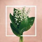 Blumenstrauß-Maiglöckchen Stockfoto