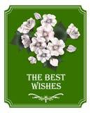 Blumenstrauß mit Anemonen glückliches neues Jahr 2007 Lizenzfreie Stockfotos