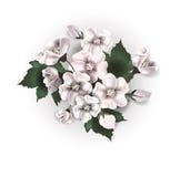Blumenstrauß mit Anemonen glückliches neues Jahr 2007 Stockfotografie