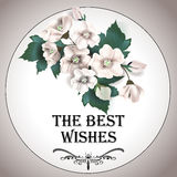 Blumenstrauß mit Anemonen glückliches neues Jahr 2007 Lizenzfreie Stockfotografie