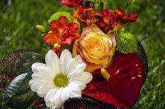 Blumenstrauß mit den weißen und roten Blumen auf einem Grashintergrund Stockfoto