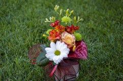 Blumenstrauß mit den weißen und roten Blumen auf einem Grashintergrund Stockfotos