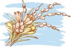 Blumenstrauß mit der Pussyweide Lizenzfreie Stockfotos