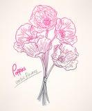 Blumenstrauß mit rosa Mohnblumen Lizenzfreies Stockbild