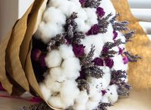 Blumenstrauß mit Rosen, Lavendel und Baumwolle Lizenzfreie Stockfotografie