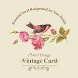 Blumenstrauß mit Rosen und Vogel, Weinlese-Karte Stockfotografie