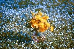 Blumenstrauß mit Vergissmeinnicht und Löwenzahn Stockfotos