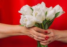 Blumenstrauß Tulpe in der Hand Lizenzfreie Stockbilder