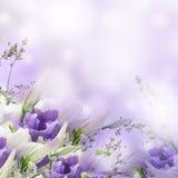 Blumenstrauß vom Weiß und vom Rosa stockfotos