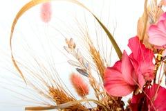 Blumenstrauß von Anlagen Lizenzfreie Stockfotos