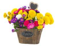 Blumenstrauß von Aster- und Mamablumen Lizenzfreies Stockbild