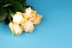 Blumenstrauß von beige Rosen auf blauem Hintergrund, Draufsicht, Kopienraum Sohn gibt der Mama eine Blume Rote Rose Lizenzfreie Stockbilder