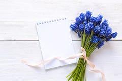 Blumenstrauß von blauen muscaries blüht mit offenem leerem Notizblock auf whi Lizenzfreies Stockbild