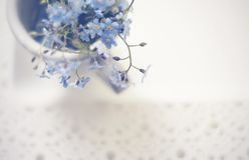 Blumenstrauß von blauen Vergissmeinnichten in einer Schale auf einem Spitzen- Behälter, die Draufsicht Lizenzfreie Stockfotografie