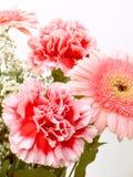 Blumenstrauß von Blumen 14 stockfotografie