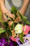 Blumenstrauß von Blumen in den Floristenfrauenarmen Phuket Stockfoto