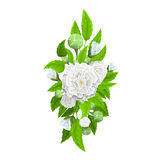 Blumenstrauß von Blumen für Dekoration Lizenzfreies Stockfoto
