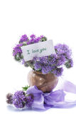 Blumenstrauß von Blumen mit blauem phacelia Stockfotos