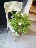 Blumenstrauß von Blumenständen auf einem Weinlesestuhl Lizenzfreie Stockbilder