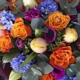 Blumenstrauß von bunten Frühlingsblumen Tulpe, Ranunculus, Hyazinthe, Stockfotografie