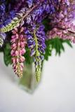 Blumenstrauß von bunten Lupines in einem Glasvase auf Weiß Kopieren Sie Platz lizenzfreie stockfotografie