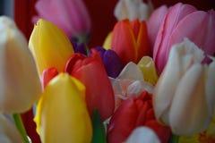 Blumenstrauß von bunten Ostern-Blumen stockfotografie