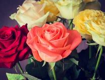 Blumenstrauß von bunten Rosen schließen oben Lizenzfreie Stockbilder
