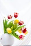 Blumenstrauß von bunten Tulpen im Vase Stockfotos