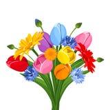 Blumenstrauß von bunten Tulpen, von Gerberablumen und von Kornblumen Auch im corel abgehobenen Betrag Stockfotografie