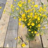Blumenstrauß von Butterblumeen blüht auf einem hölzernen Hintergrund, rustikales stillife Stockfotografie