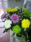 Blumenstrauß von Chrysanthemen Stockfoto