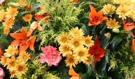 Blumenstrauß von colorfoul Blumen Lizenzfreies Stockbild