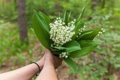Blumenstrauß von den Farben von Maiglöckchen stockfotografie