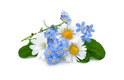 Blumenstrauß von den Gartenblumen lokalisiert Lizenzfreie Stockfotografie